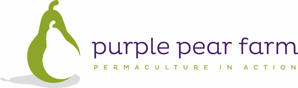 Purple Pear Farm School Anambah, Australia