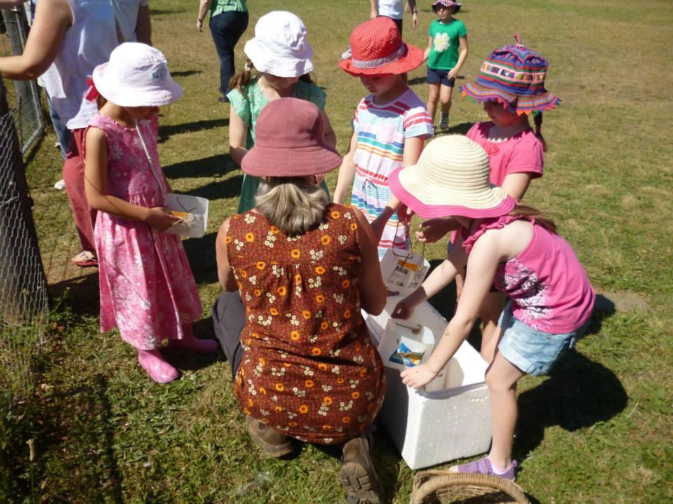 Children`s Activities - Purple Pear Farm School